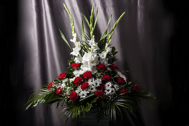 flores_hispanidad_03